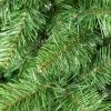 Műkarácsonyfa kaukázusi jegenyefenyő részlet 2