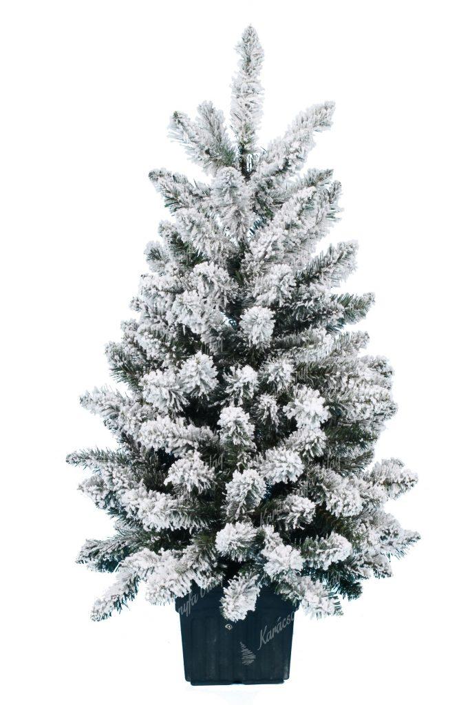 Műkarácsonyfa Havas Mini Jegenyfenyő
