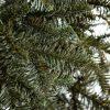 FULL 3D-s Normandiai Jegenyefenyő karácsonyfa